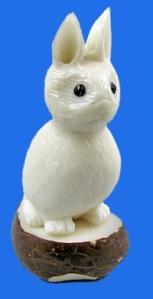 Rabbit-sm