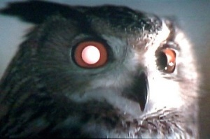 artificial owl in the film Blade Runner