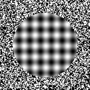 If you stare at this image, you will see movement where there is none.